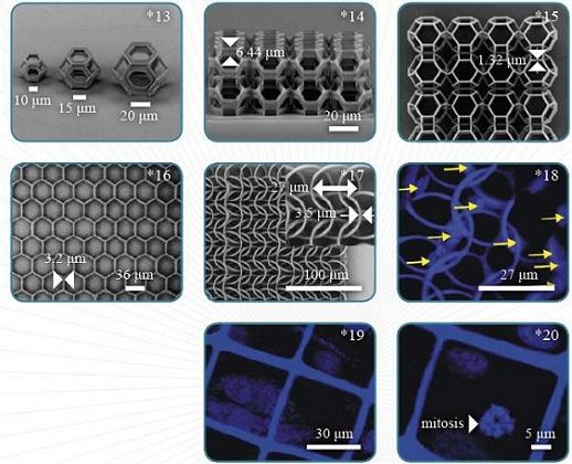 多光子聚合3D纳米光刻机